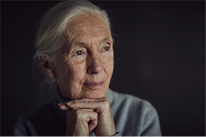 Jane Goodall - Environment, Climate Change